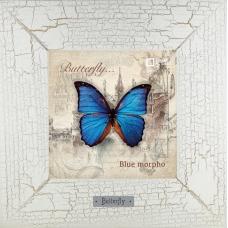 Заказать картину-сувенир с бабочкой Blue morpho на сайте