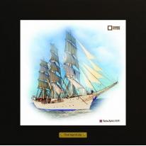 Christian Radich картина корабль в море 28х28 см
