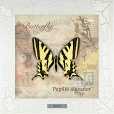 Бабочка Papilio alexanor на керамике