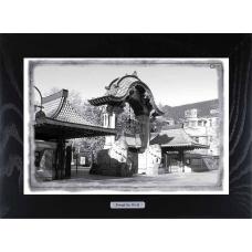 Купить картину Берлинский зоопарк в качестве подарка